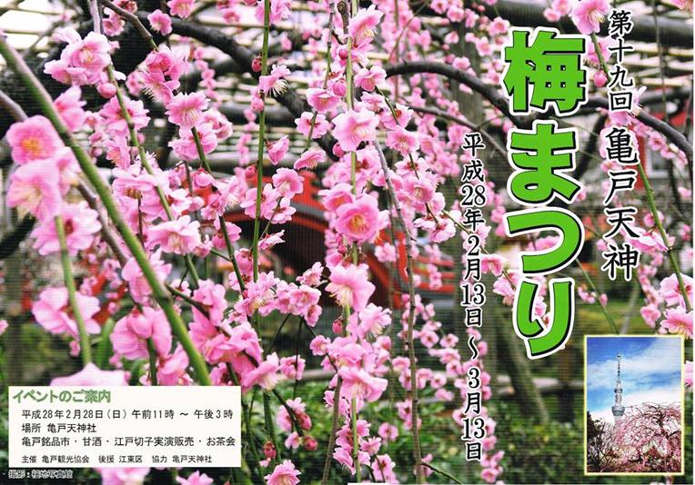 2016 亀戸天神 梅まつり
